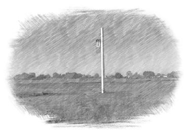 brisley-common